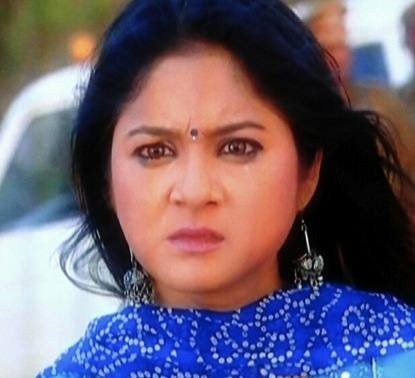 Chandni - culled from Zee Television